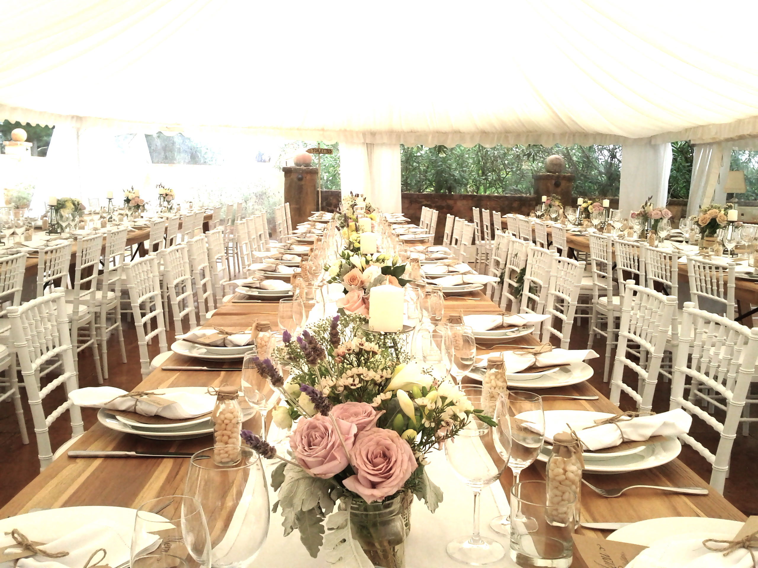 Tiffany chairs wedding ceremony styling tips choosing the right light and pretty summer setting frank and joy junglespirit Image collections